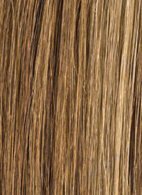 Honey Blonde Streaks 110